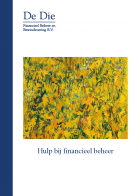 folder_A4_financieel-beheer_v6_front